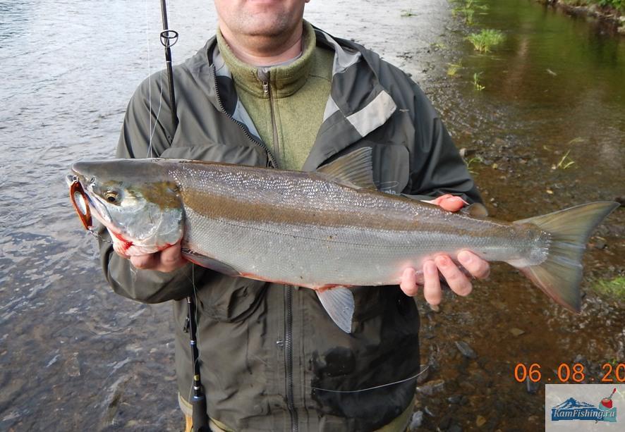 Неизвестная рыба на Smith 10 гр., 3