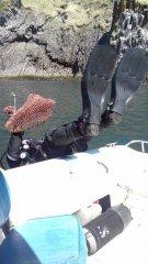 Лоботряс на рыбалке2