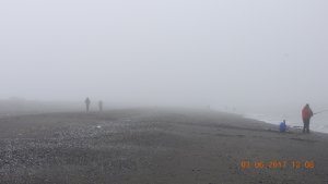 """""""Туман, туман, слепая пелена..."""""""
