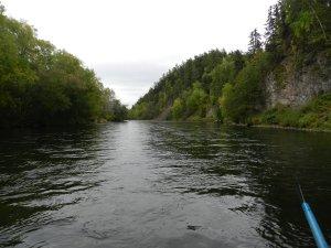 рыбалка на р.Левая