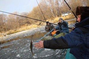 корюшковая рыбалка