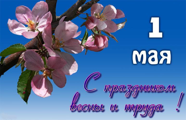 1712189642_!.jpg.7e921e691f36047fcd9e3c4e8b934179.jpg
