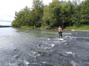 рыбалка на камнях 2.jpg