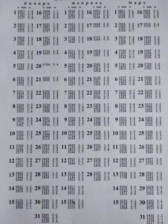 216_n.jpg