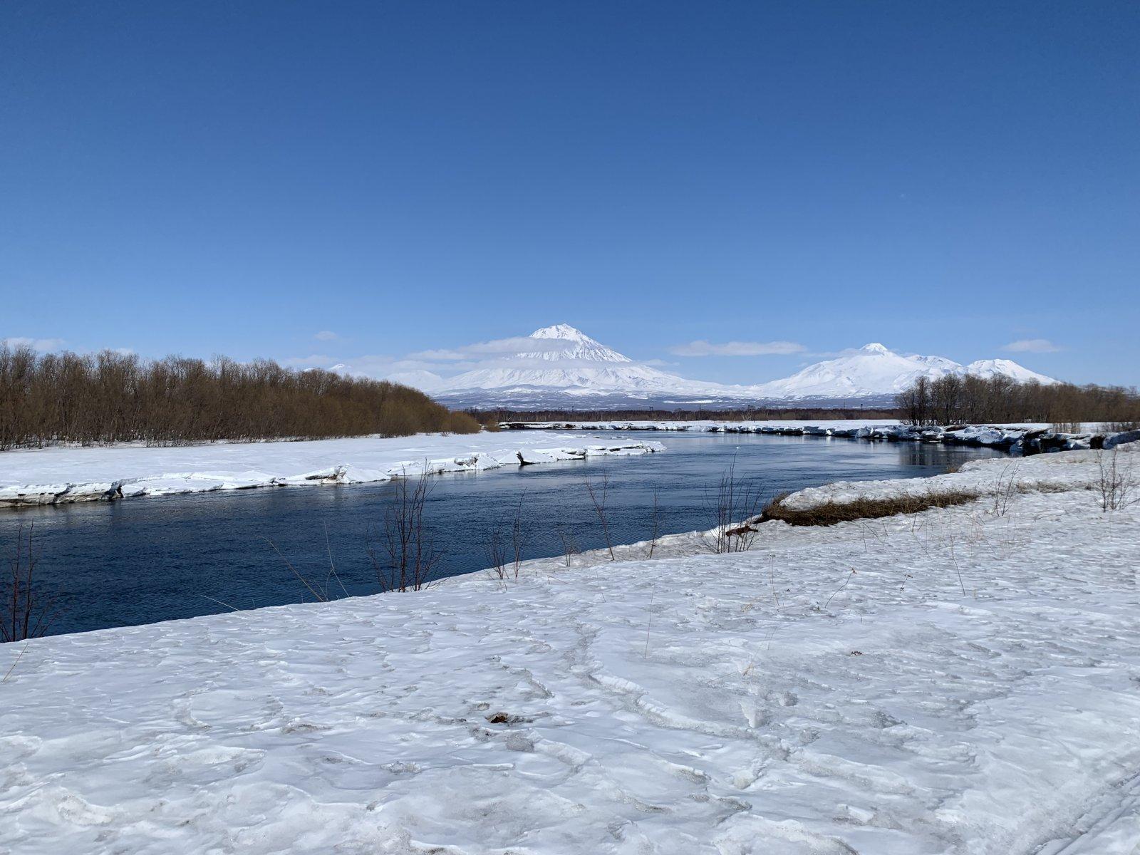 река Авача открытие сезона