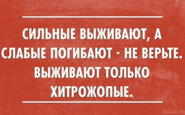 ЖИЗНЬ (4).jpg