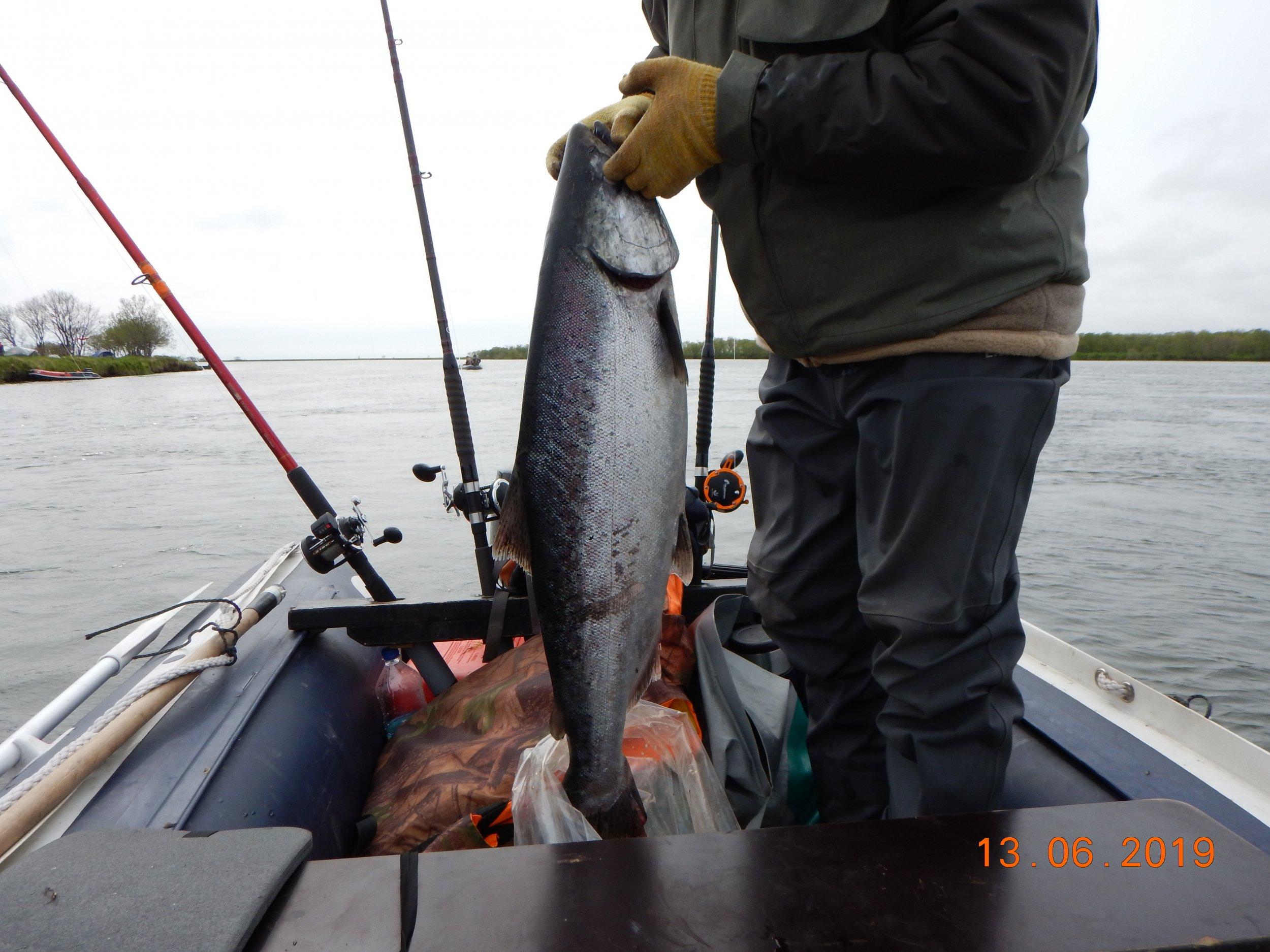 Вторая рыбка, 9-10 кг