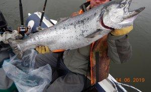 Третья рыбка, 9800
