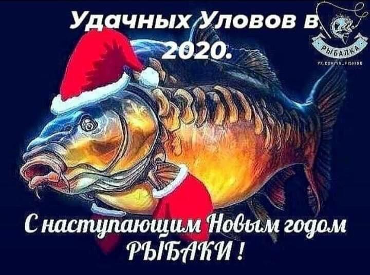 IMG-20191231-WA0005.jpg