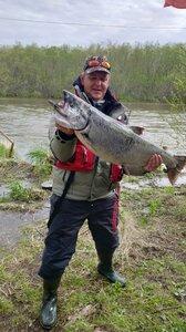 King Salmon 2020